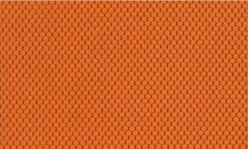 BL405 oranžna